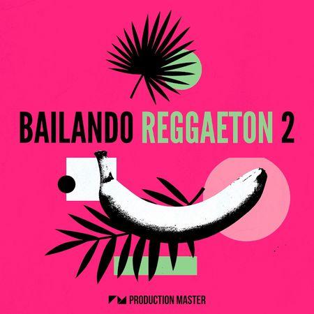 Bailando Reggaeton 2 MULTiFORMAT-FLARE