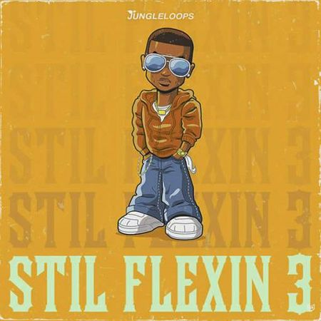 Still Flexin 3 WAV MiDi-DISCOVER